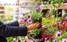 گل فروشی در اسحاق بیگ ، ارسال گل در اسحاق بیگ شیراز