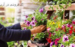 گل فروشی در آرین ، ارسال گل در آرین شیراز