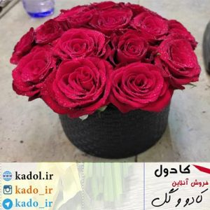 سبد گل رز 15 شاخه